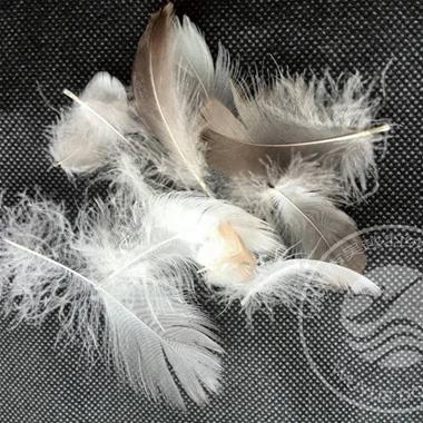 4-6cm Grey Goose