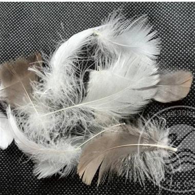 5-8cm Grey Goose A