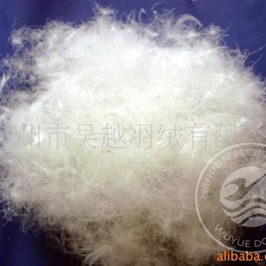 80%精洗白鸭绒